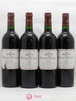 Les Hauts de Pontet-Canet Second Vin 2003
