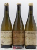 Vin de France Le Jambon Blanc La Grande Bruyère - Philippe Jambon 2004