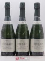 Champagne 1er cru Les Vignes de Vrigny Egly Ouriet