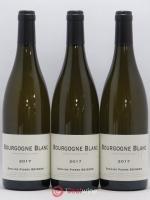 Bourgogne Pierre Boisson (Domaine) 2017