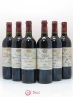 Château Sociando Mallet  1996 - Lot of 6 Bottles