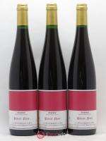 Alsace Pinot noir Le Chant des Oiseaux Gérard Schueller (Domaine) 2016