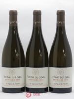 IGP Vin des Allobroges Terroir du Léman Amphore Les Vignes du Paradis 2016