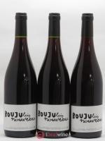 Vin de France Boujulais Nouveau Patrick Bouju