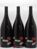 Vin de France La Vierge rouge Domaine Yoyo 2019