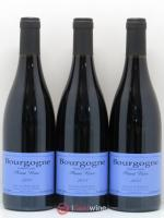 Bourgogne Sylvain Pataille (Domaine)  2015 - Lot of 3 Bottles