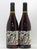 Vin de France Nyctalopie Daniel Sage 2018
