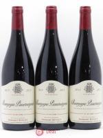 Bourgogne Passetoutgrain Emmanuel Rouget (Domaine) 2015