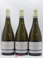 Chevalier-Montrachet Grand Cru Clos des Chevaliers Jean Chartron (Domaine) 2016