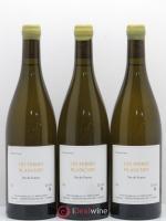 Vin de France Les Terres Blanches Stéphane Bernaudeau (Domaine) 2015