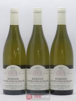 Hautes Côtes de Beaune Domaine Rollin 2017