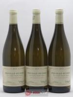 Pouilly-Fuissé Les Combes Vieilles Vignes Verget 2015