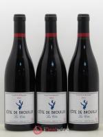 Côte de Brouilly Decelle-Villa La Côte 2012