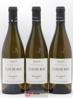 Saumur Clos de Midi Arnaud Lambert Brézé (sans prix de reserve) 2019