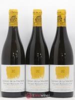 Chassagne-Montrachet 1er Cru Morgeot Vigne Blanche Château de la Maltroye 2012