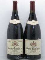 Gevrey-Chambertin Chevillon Molinet 2004 - Lot de 2 Magnums