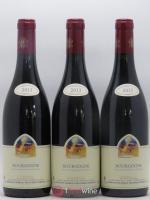 Bourgogne Mugneret-Gibourg (Domaine) 2013