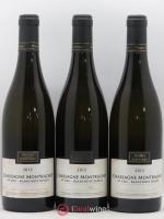 Chassagne-Montrachet 1er Cru Blanchots Dessus Morey-Coffinet (Domaine) 2012