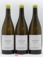 Vin de France Les Onglés Stéphane Bernaudeau (Domaine) 2018