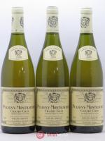 Puligny-Montrachet 1er Cru Champ-Gain Louis Jadot 2009