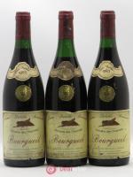 Bourgueil Prestige des Chesnaies (Domaine) 1983