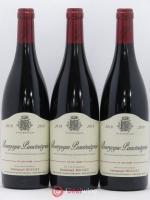 Bourgogne Passetoutgrain Emmanuel Rouget (Domaine) 2018