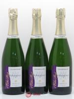 Champagne Champagne Extra Brut 1er Cru Champagne Margaine ---- - Lot de 3 Bouteilles