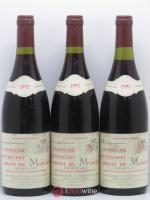 Chassagne-Montrachet 1er Cru Abbaye de Morgeot Fleurot Larose 1992