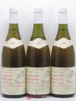 Chassagne-Montrachet 1er Cru Abbaye de Morgeot Fleurot Larose 1993