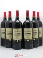 Graves Château Tourteau 2009 - Lot of 6 Magnums