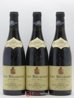 Côte-Rôtie Les Bécasses Chapoutier 2004