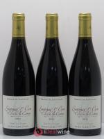 Santenay 1er Cru Clos de La Comme Michel Clair 2012