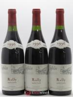 Rully Jaffelin 1996