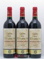 Saint-Émilion Grand Cru Clos des Menuts 2001