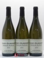 Auxey-Duresses 1er Cru En Reugne Pierre Boisson (Domaine) 2012