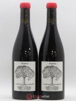 Vin de France Statera Jérôme Bretaudeau Bellevue (Domaine de) 2018