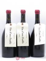 Saint-Nicolas de Bourgueil Vin d'une Oreille Sebastien David 2014