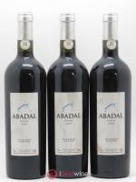 Espagne Pla de Bages DO Abadal Reserva Masies d'Avinyo 2001