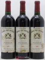 Château Grand Puy Ducasse 5ème Grand Cru Classé 2001