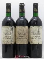 Amiral de Beychevelle Second Vin 1996