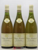 Puligny-Montrachet 1er Cru Les Combettes Etienne Sauzet 1996