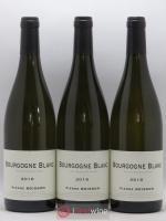 Bourgogne Pierre Boisson (Domaine) 2016