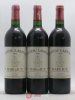 Château Larruau Cru Bourgeois 1999