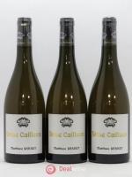 Côtes du Rhône Brise Cailloux Coulet (Domaine du) Matthieu Barret 2016