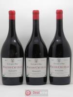 Mâcon-Cruzille Manganite Domaine des Vignes du Maynes 2015