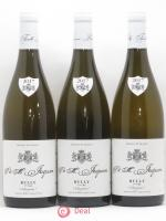 Rully 1er Cru Margotés Paul & Marie Jacqueson 2017