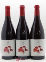 Vin de France Clos des Grillons Oeillet Rouges 2019