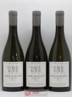 Puligny-Montrachet 1er Cru Sous le Puits Terre de Blagny Benoît Ente 2014