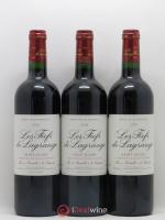 Les Fiefs de Lagrange Second Vin 2006