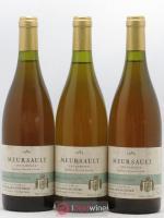 Meursault Les Narvaux Guillemard Pothier 1989